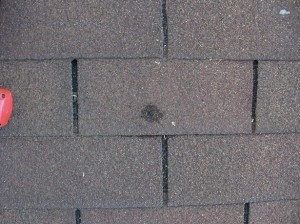 Roof.net-leak-repair-va