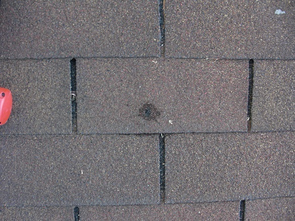 how to find roof leak shingles