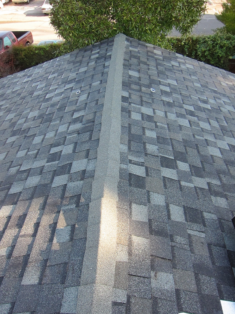 Roof Ridge Vent Leak Repair