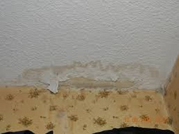 There can be many reason why your roof is leaking and we can help find them