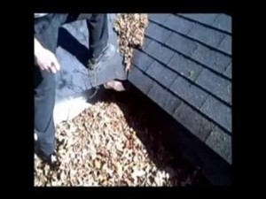 roof.net-roof-cleaning-va