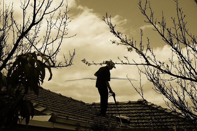 Clean Your Gutters And Trim Your Tree Branches
