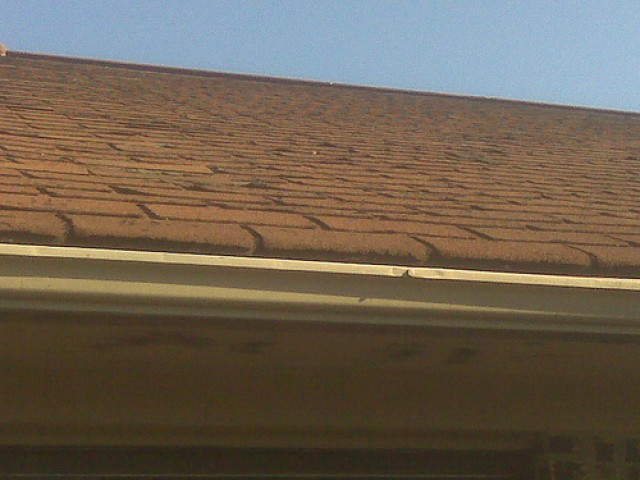 High Winds Can Damage Your Shingles