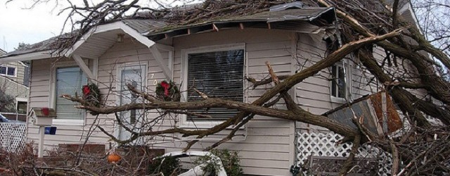 Be Prepared For Wind Damage To Your Roof