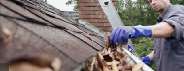 Remember Gutter Cleanings While Making Roof Repairs In Woodbridge