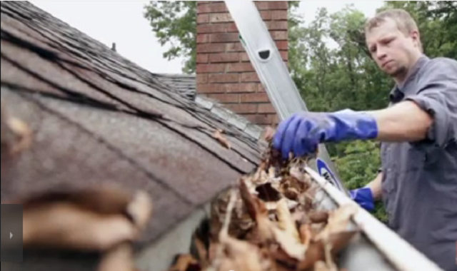 Cleaning Your Gutters and Roof Repairs In Manassas