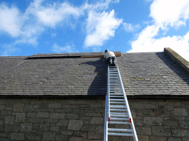 roofer fixing shingle roof