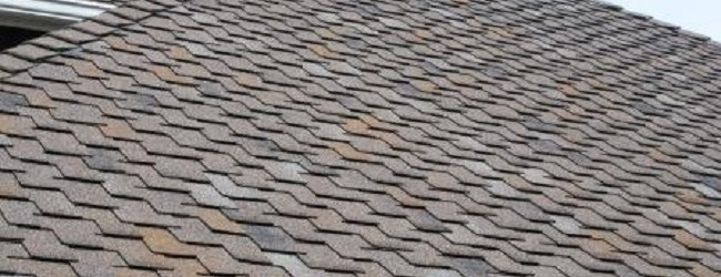 All You Need To Know About Traditional Shingles