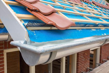 Zinc gutters on roof
