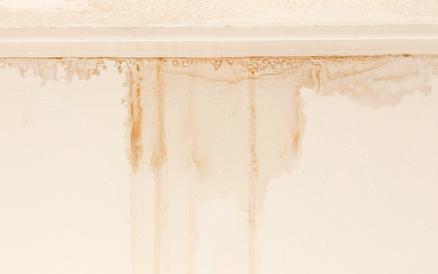 leak damage